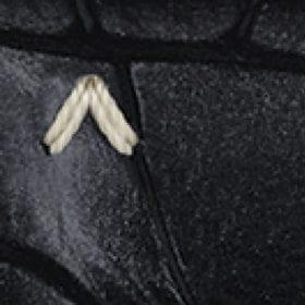 Black Croco-Style Rubber